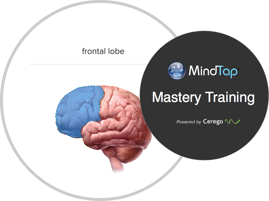 Cengage creates a new, personalized learning experience for psychology students