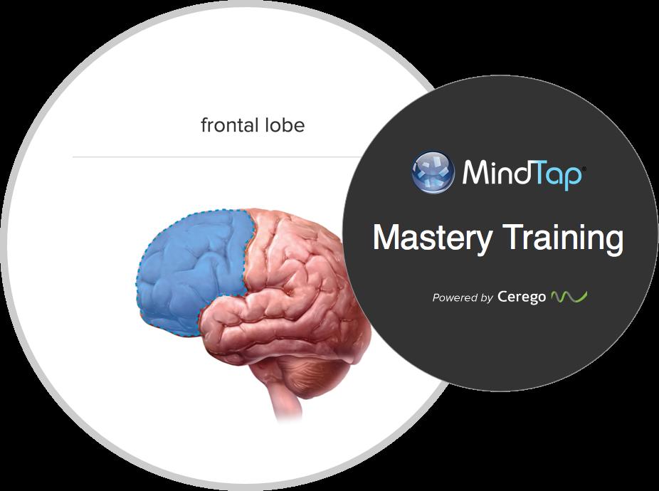 Cengage crée une nouvelle expérience d'apprentissage personnalisée pour les étudiants en psychologie