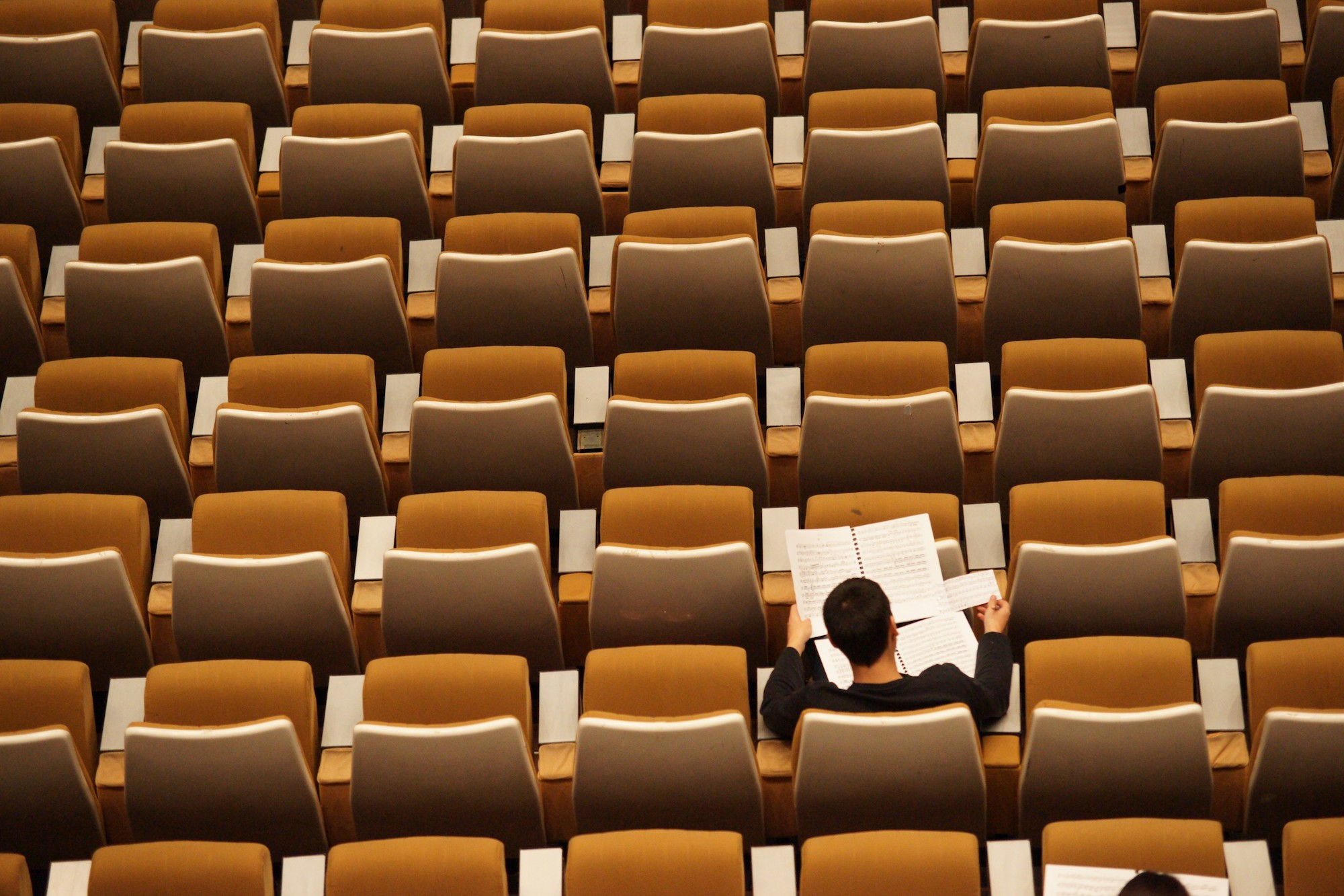 Person studying in a lecture hall